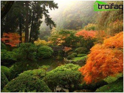 tutti i segreti della creazione di un giardino feng shui - Piccolo Giardino Feng Shui