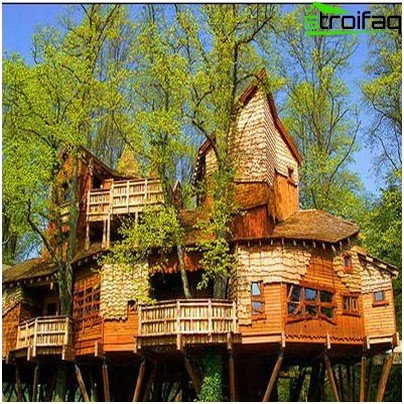 a large tree house