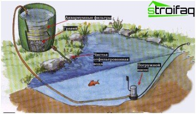 homemade water purification system in the pond