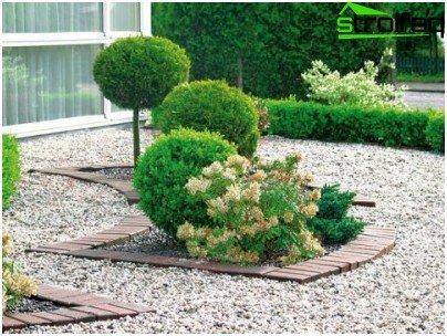 Trädgård Grus : Hur man höja öken av grus trädgård
