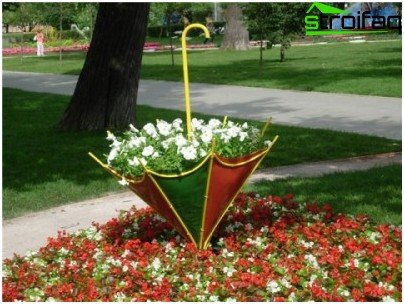 flower garden in an umbrella