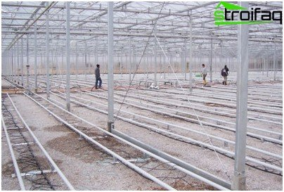 greenhouses with drip irrigation