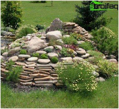 Klomby z kamienia wyspy z g rskiej przyrody w ogrodzie - Giardini di montagna ...