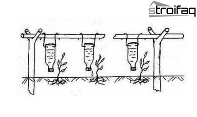watering organization