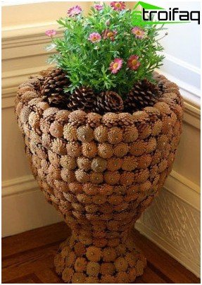 cones for decoration pot
