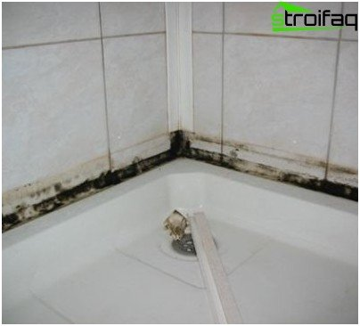The appearance of mold on the tile surface