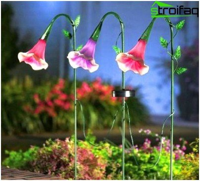 night garden lighting