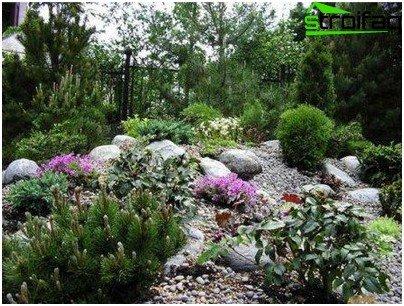 Trädgård Grus : Anslutnings färger och sten skapar på platsen för grus trädgård