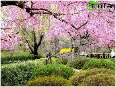 style garden