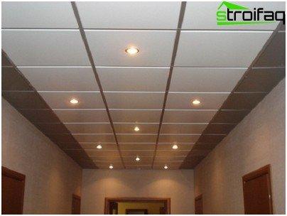 Cassette ceiling