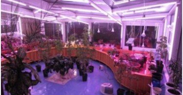 LIGHTING PLANT FUNCTION, METHODS
