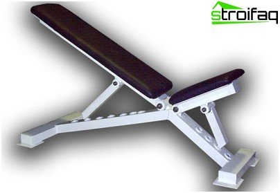 Fitness equipment for the gym: athletic bench