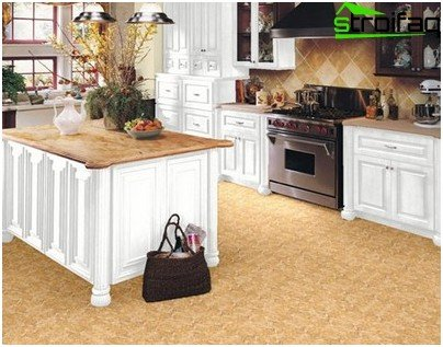 Linoleum Kitchen in country style