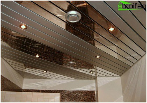 Pinion ceilings for bathroom - the embodiment of all ideas