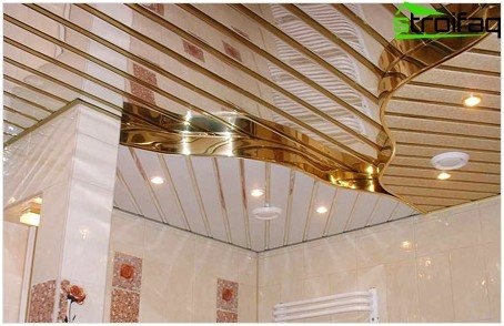 Rack and pinion ceiling in the bathroom
