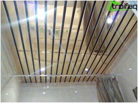 mirrored ceiling rack