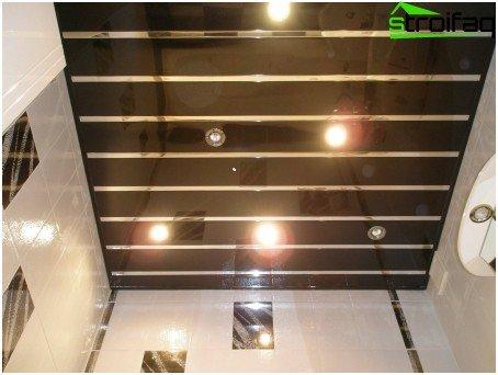 Pinion ceilings for bathroom