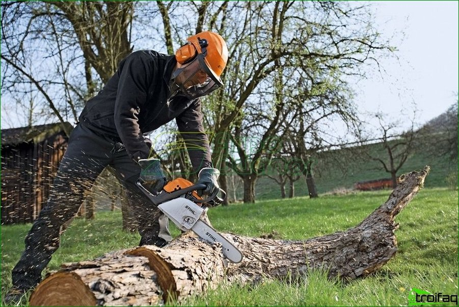 STIHL Chainsaws and accessories