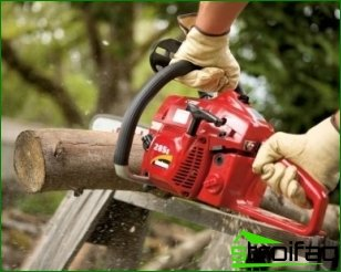 Foundations operating chainsaws
