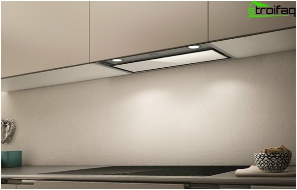 Hood for the kitchen (built-in) - 2
