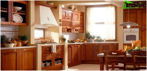 Kitchen appliances (extractor) - 1