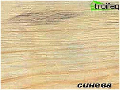 Het verschijnen van tekenen van verval op het hout (blauw)