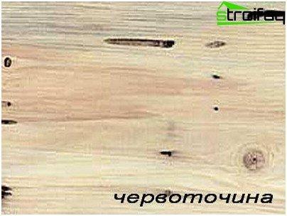 Schade aan hout door ongedierte
