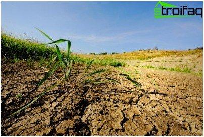 진흙 토양