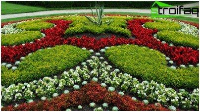 орнамент з низькорослих квітів