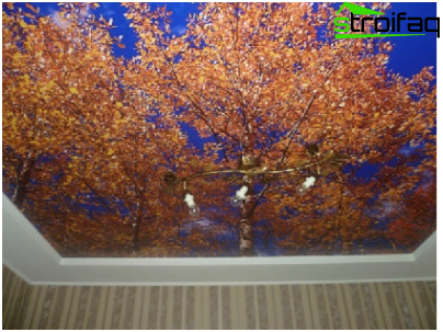 Ceiling with photo printing