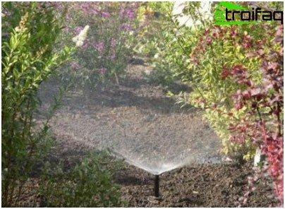 토양 뿌리기