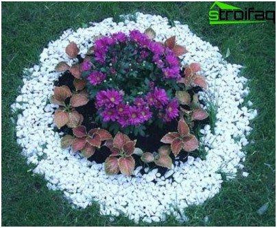 schönes Blumenbeet