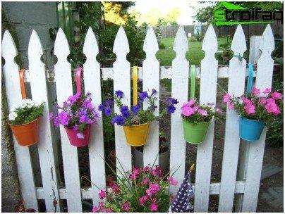 울타리에 꽃