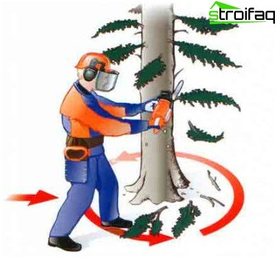 wie man einen Baum fällt