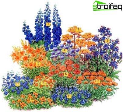 spektakulärer Blumengarten