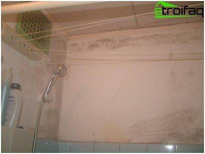 Вентилацията с естествена мотивация в старите къщи е предназначена за температурни разлики вътре в апартамента и извън него, така че през лятото всъщност не работи, мухъл се появява по стените