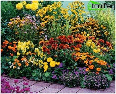 цветна градина през есента
