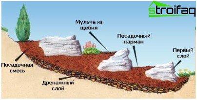 تلة جبال الألب
