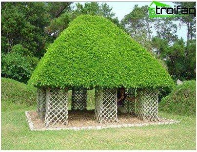 옥상 잔디밭