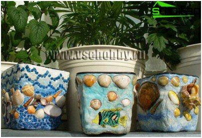 Pots with shells