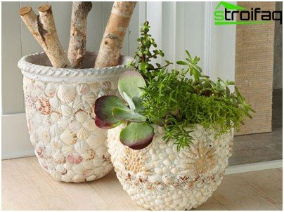 Decor with seashells in pastel colors