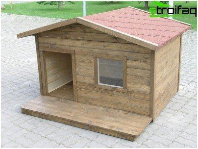 بيت الكلب