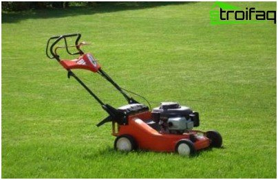 ดูแลสนามหญ้า