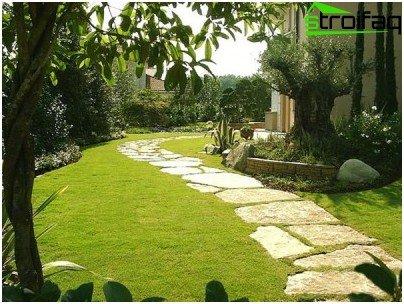 집 잔디밭