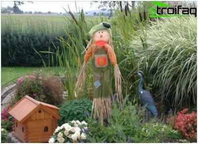 strach na wróble w ogrodzie