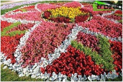 gør-det-selv-blomsterhave