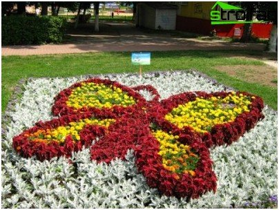 decoration of flower beds