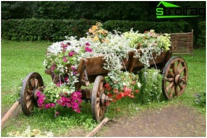 interessant blomsterbed
