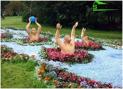 정원의 꽃
