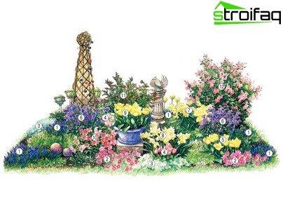 ترتيب النباتات في حوض الزهور